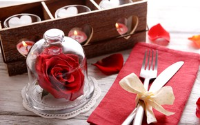 Picture romance, rose, candles, plug