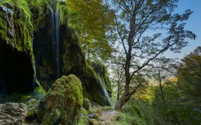 Picture trees, nature, stones, waterfall, moss, Alexander Sandev, landscape rock