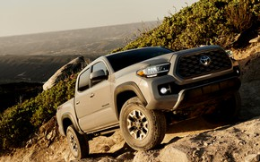 Picture slope, Toyota, pickup, Tacoma, 2020
