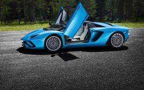 Picture Lamborghini, door, supercar, 2017, Aventador S