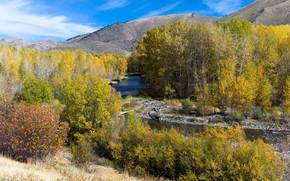 Picture autumn, landscape, nature, river, beauty, space