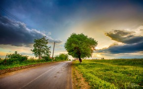 Picture road, the sky, clouds, trees, Faik Nagiyev