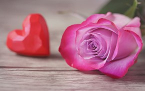 Picture macro, heart, rose, Bud