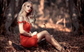 Picture girl, forest, long hair, dress, legs, photo, photographer, blue eyes, model, tattoo, bokeh, lips, face, …