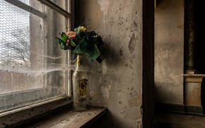 Picture flowers, window, naturalism
