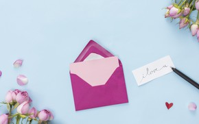 Picture handle, roses, buds, the envelope