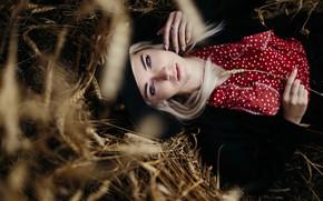 Picture girl, long hair, field, hat, photo, blue eyes, model, bokeh, lips, jeans, face, blonde, wheat, …