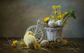 Picture flowers, bike, holiday, eggs, Easter, hay, dandelions, chicken, composition, pots, Kovaleva Svetlana