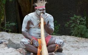 Picture body painting, musical instrument, australian aborigine