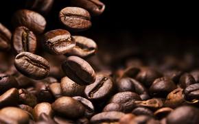Picture macro, coffee, grain
