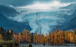 Picture glacier, Alaska, USA, National Park Kenai fjords