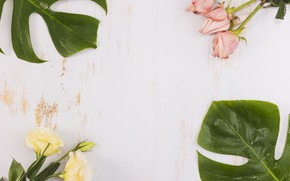 Picture leaves, roses, eustoma