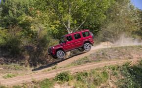 Picture jump, Mercedes-Benz, SUV, G500, G-Class, 2015, G 500, V8 Biturbo