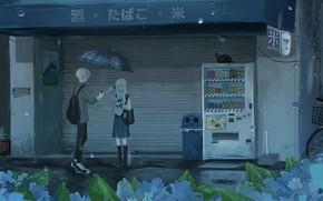 Picture cat, girl, rain, machine, guy