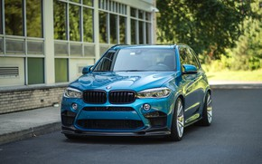 Picture BMW, Blue, Predator, X5M, Sight, F85