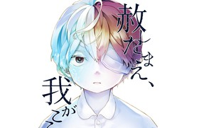Picture boy, My Hero Academia, Boku No Hero Academy, Todoroki Shoto, My Hero Academy