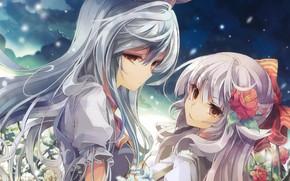 Picture starry sky, flower in hair, Touhou Project, Fujiwara no Mokou, Project East, two girls, long …