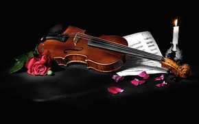 Picture flowers, style, notes, music, violin, roses, candle, petals, black background, still life, items, musical instrument, …