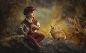 Picture autumn, nature, stones, animal, vegetation, boy, rabbit, child, Jansone Dace