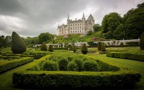Picture trees, Park, castle, Scotland, the bushes, Scotland, Sutherland, Dunrobin Castle, Castle Dunrobin, Sutherland