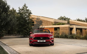Picture Ford, Parking, convertible, front view, 2018, dark red, Mustang Convertible