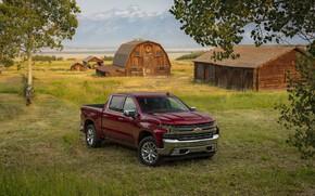 Picture grass, Chevrolet, pickup, structure, LTZ, Silverado, Z71, 2019