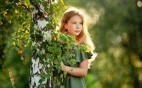 Picture dress, girl, birch, Sergey Piltnik