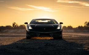 Picture design, Lamborghini, car, the front, Turbo
