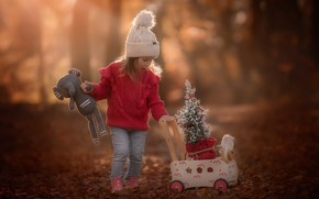 Picture nature, toys, girl