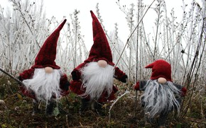 Picture winter, frost, grass, snow, branches, nature, holiday, glade, toys, doll, Christmas, dwarves, three, New year, …