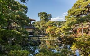 Picture lake, Park, stones, beauty, Japan, Kyoto