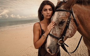 Picture sea, look, girl, shore, horse, Tommy Napolitano