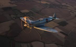 Picture Screw, Fighter, Earth, Spitfire, RAF, The Second World War, Supermarine Seafire, Spitfire PR.Mk XI
