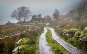 Picture road, greens, the sky, grass, trees, mountains, nature, fog, house, stones, the fence, slope, Scotland, …
