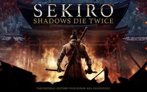 Picture Games, Shadows Die Twice, Sekiro