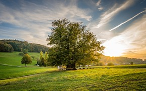 Picture greens, the sky, grass, the sun, clouds, rays, trees, dawn, field, Switzerland, houses, forest, meadows, …