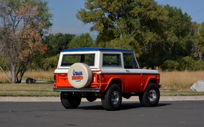 Picture Ford, 1971, ass, Wagon, Bronco, Baja Edition, Stroppe