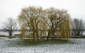Picture beach, grass, snow, river, Spring, flood, IVA.