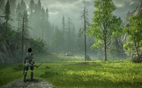 Picture forest, grass, meadow, Shadow of the Colossus, In the shadow of the colossus
