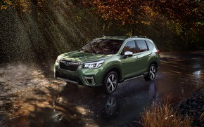 Picture Subaru, wet asphalt, crossover, Forester, 2019
