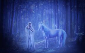 Picture forest, girl, unicorn, virgin, fantasy