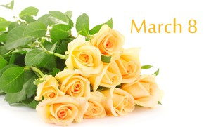 Picture roses, bouquet, 8-Mar