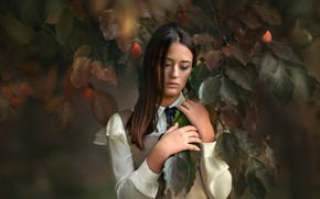 Picture leaves, girl, reverie, branches, face, tree, mood, hands