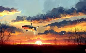 Picture Sunset, The sun, Shark, Fantasy, Art, Fiction, Concept Art, Dominik Mayer, by Dominik Mayer, 30 …