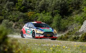 Picture rally, ford fiesta r5, castrol ford team turkey