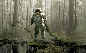Picture forest, trees, fog, swamp, moss, the suit, snag, astronaut
