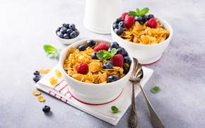 Picture raspberry, Breakfast, blueberries, mint, cereal, Iryna Melnyk