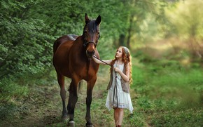 Picture summer, nature, horse, girl, walk