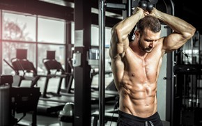 Picture pose, muscle, muscle, press, training, athlete, simulators, bodybuilder, training, abs, Gym, bodybuilder, gym
