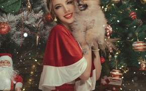 Picture girl, decoration, smile, holiday, toys, new year, dog, makeup, braid, tree, brown hair, dog, Spitz, …